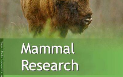 Mammal Research rebuilding its Impact Factor