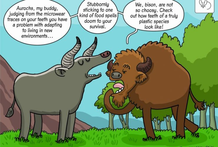 Science cartoon showing the impact of environmental changes in the Holocene on the diet of large herbivores