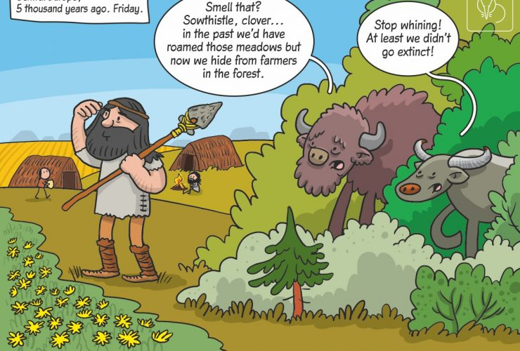 Science cartoon on habitat use by megaherbivores during the Holocene