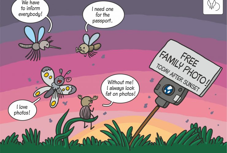 12.02.2020 Scientific cartoon on method for estimating densities of insects