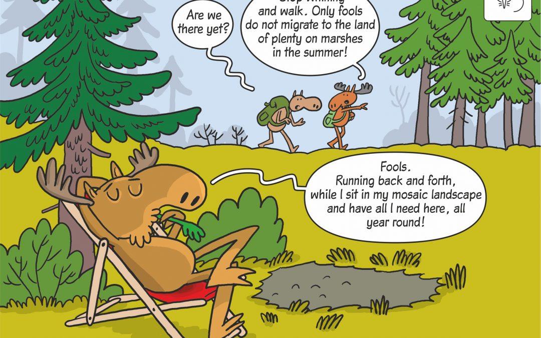 25.03.2020 – Science cartoon on moose migrations