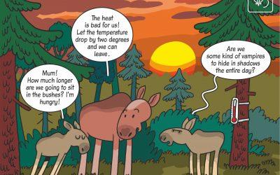 30.04.2020 – Science cartoon on influence of heat on moose behavior!