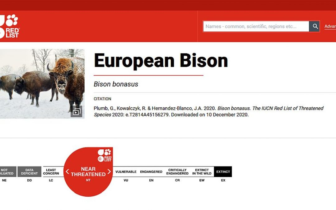 10.12.2020 – Change of European bison thretened category