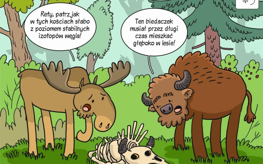 Komiks naukowy o użytkowaniu środowisk i diecie dużych roślinożerców w Europie