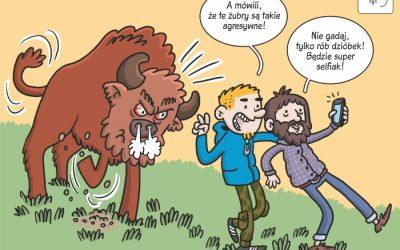 Komiks naukowy o reakcjach żubrów na obecność człowieka!