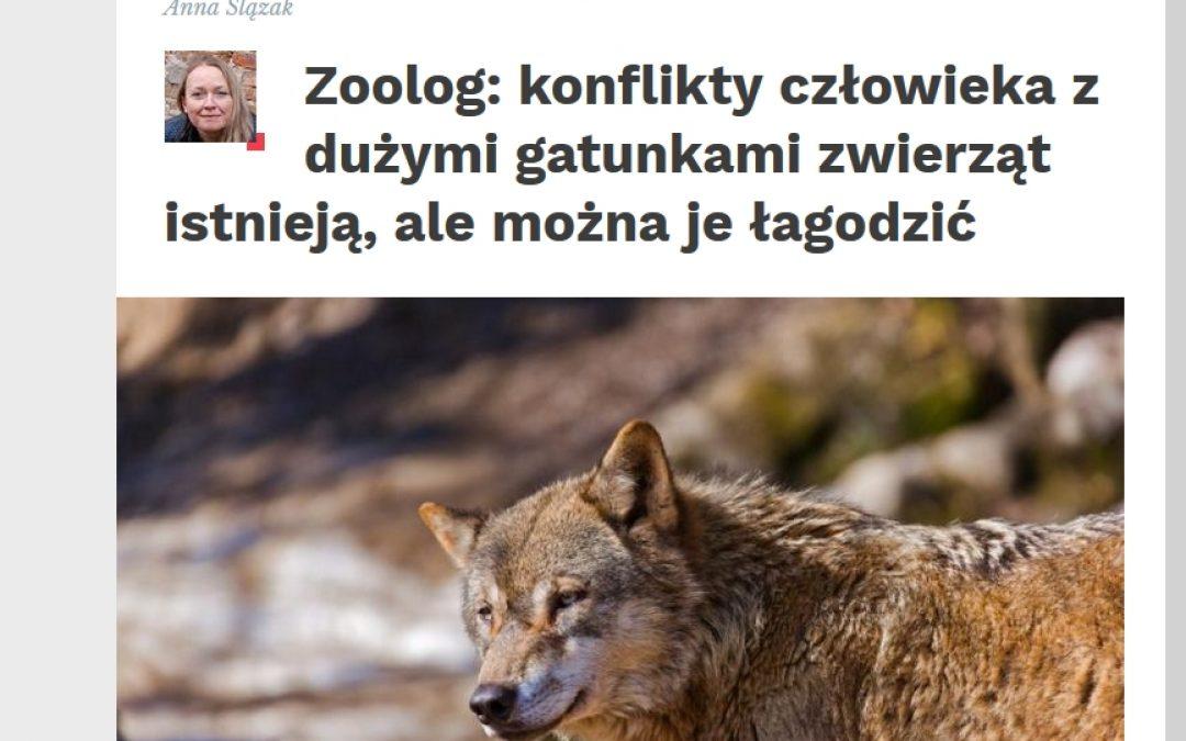 Nauka w Polsce o konfliktach z dużymi zwierzętami