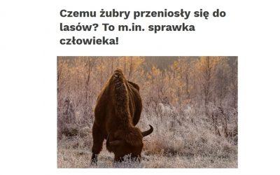 15.07.2019 Nauka w Polsce o badaniach paleoekologicznych nad dużymi roślinożercami w Holocenie