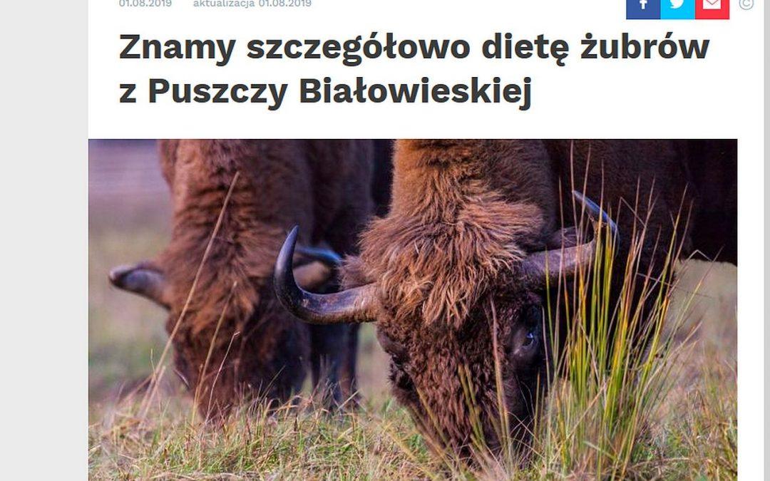 01.08.2019 – Nauka w Polsce o badaniach IBS PAN nad dietą żubra