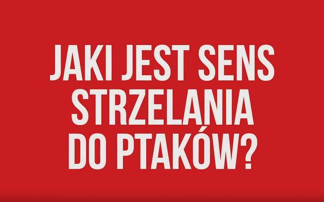 15.08.2019 –  #naTropie o polowaniach na ptaki w Polsce