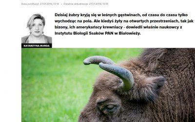 27.07.2019 Newsweek o badaniach IBS PAN nad megafauną