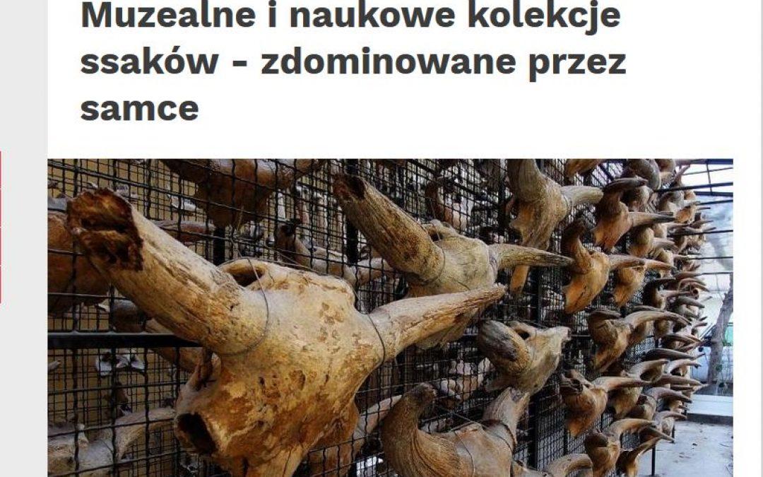13.09.2019 – Nauka w Polsce o badanich nad dominacją samców w kolekcjach ssaków.