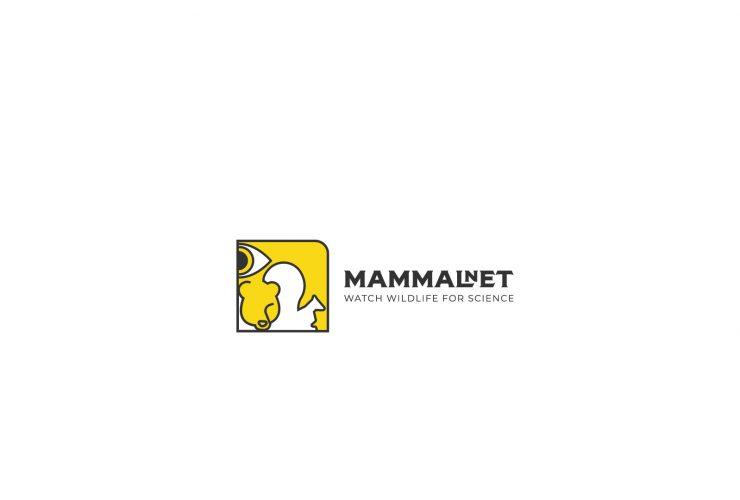 30.10.2019 Ruszył projekt nauki obywatelskiej MammalNet