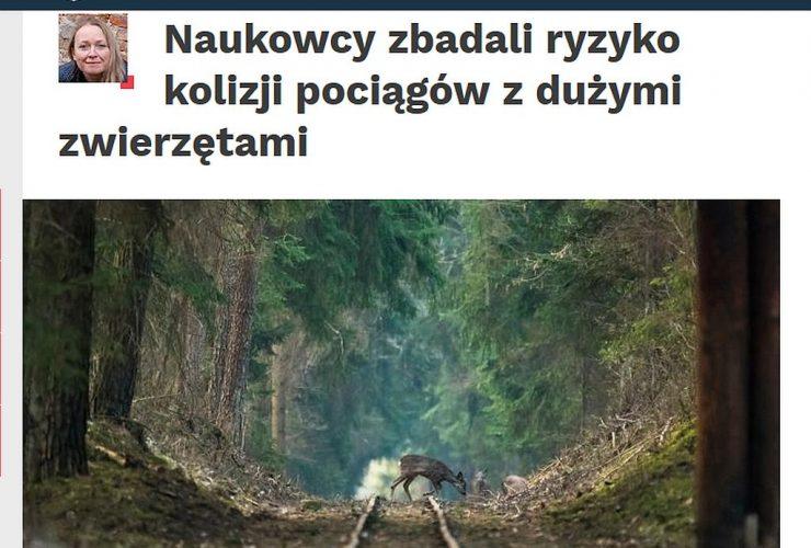 03.10.2019 Nauka w Polsce o badaniach dotyczących kolizji zwierząt z pociągami