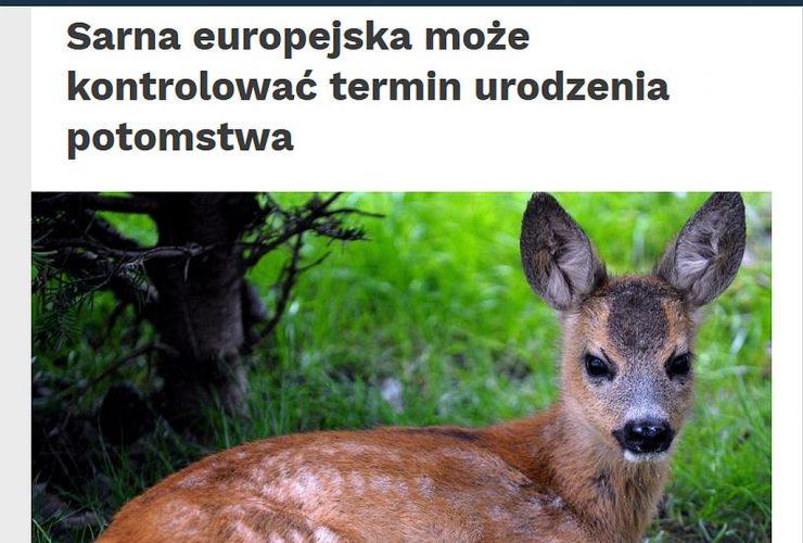 28.10.2019 – Nauka w Polsce o rozrodzie ssaków kopytnych