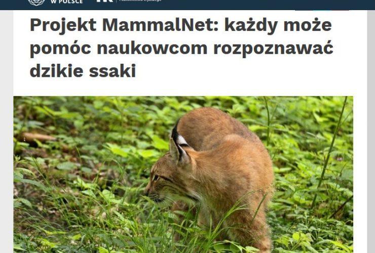 31.10.2019 Nauka w Polsce o projekcie MammalNet