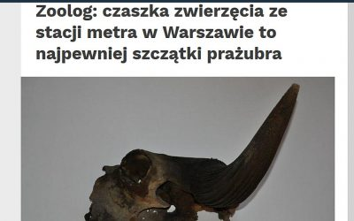 20.12.2019 – Nauka w Polsce o okazie prażubra znalezionym na budowie warszawskiego metra