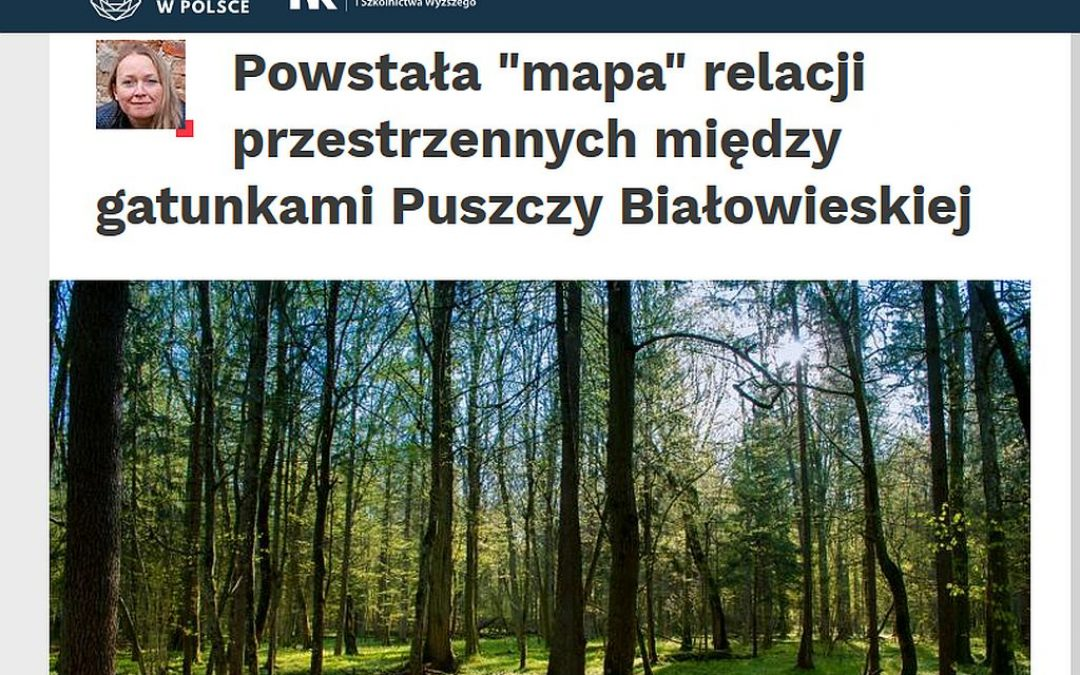 28.11.2019 – Nauka w Polsce o badaniach IBS PAN nad rozmieszczeniem ssaków w Puszczy Białowieskiej