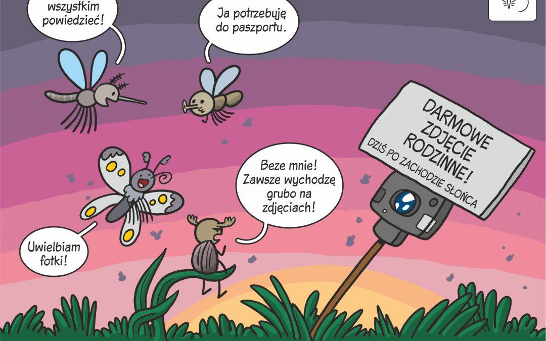 12.02.2020 Komiks naukowy o nowej metodzie szacowania zagęszczeń owadów