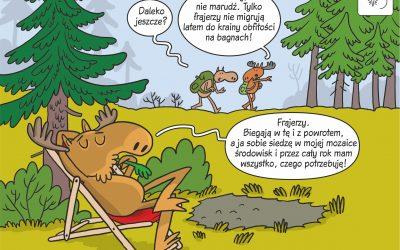 25.03.2020 – Komiks naukowy o migracjach łosi