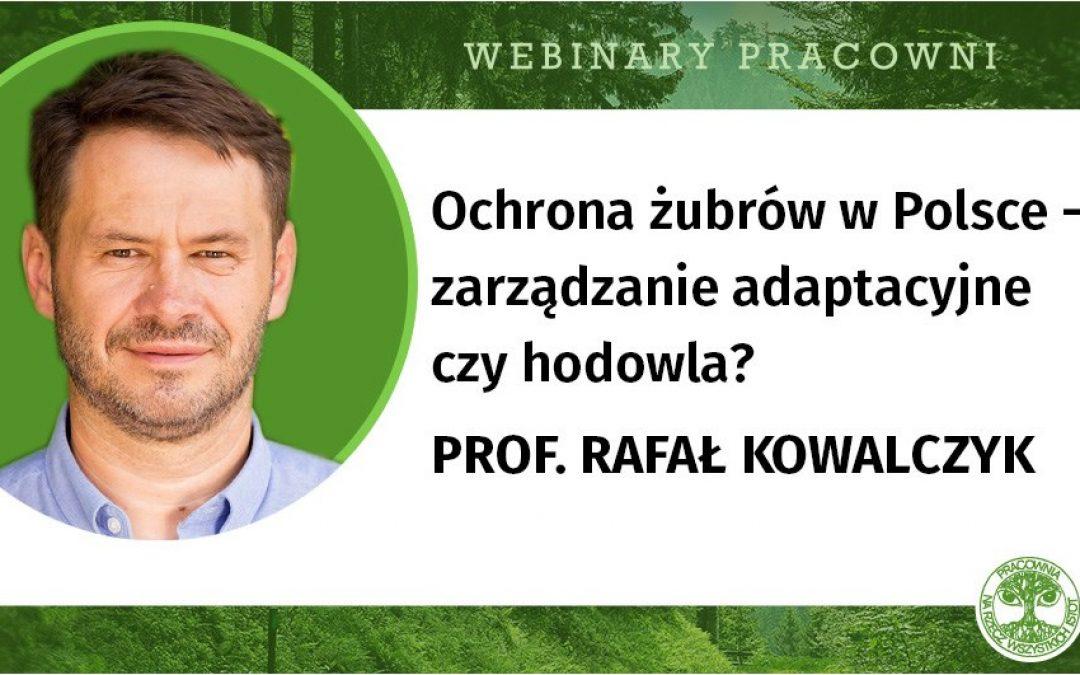 13.05.2020 – Webinar dotyczący ochrony żubrów w Polsce