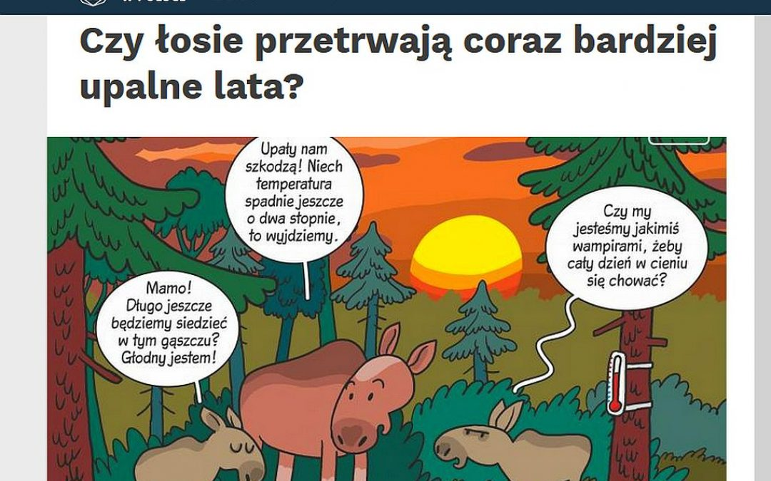 06.05.2020 – Nauka w Polsce o wpływie upałów na zachowanie łosi!