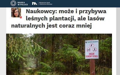 06.08.2020 – Naukowcy o gospodarce leśnej w Polsce I Europie