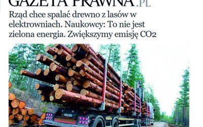 30.07.2020 – Naukowcy w obronie lasów
