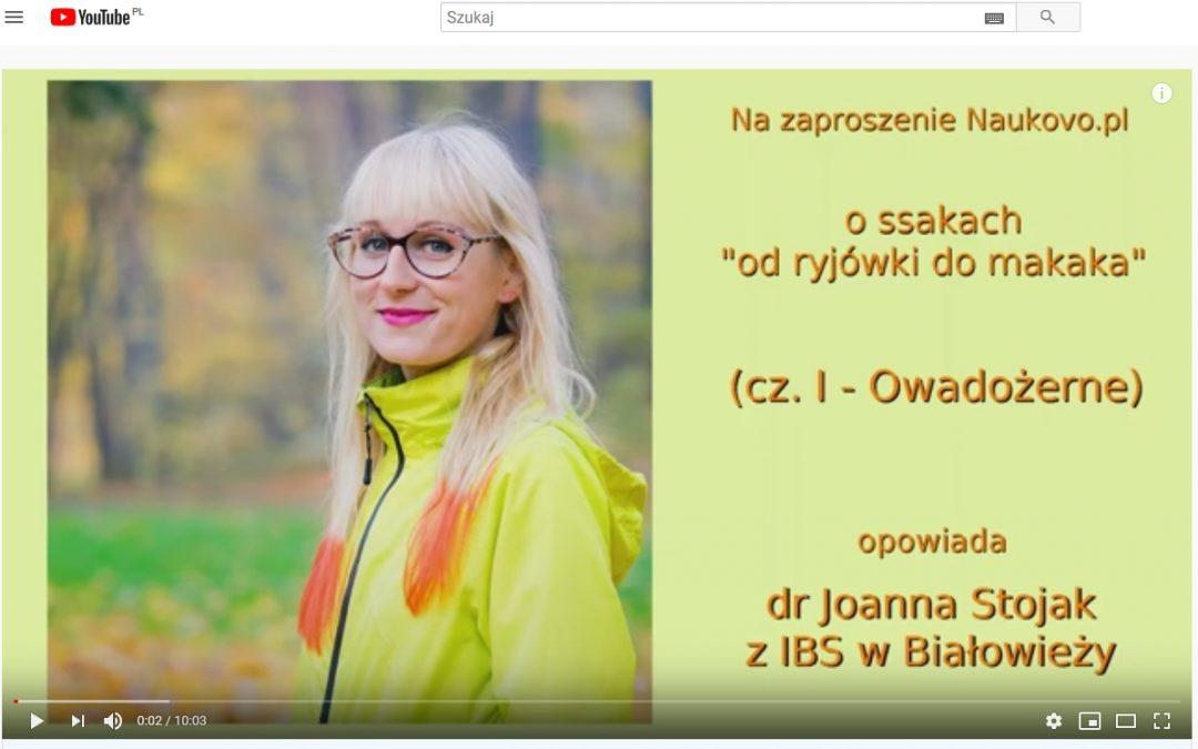 10.09.2020 – Cykl krótkich opowieści o ssakach już do posłuchania na Naukovo.pl!