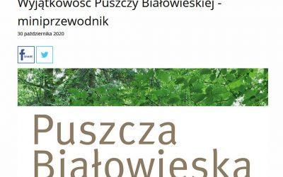 02.11.2020 – O Puszczy Białowieskiej w Polskim Radiu Białystok