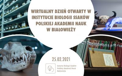 25.02.2021 Wirtualny dzień Instytutu
