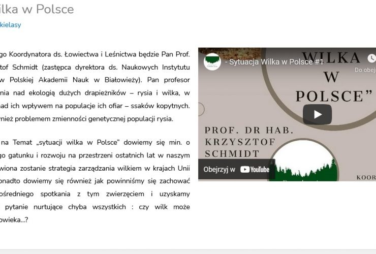 """23.03.2021 Wywiad o wilku dla Fundacji """"Polskie Lasy"""""""