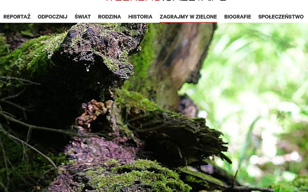16.07.2021 – Wywiad z dyrektorem IBS PAN o parkach narodowych