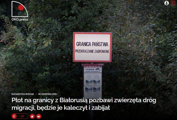25.08.2021 – Płot budowany na granicy zagrozi białowieskim rysiom!