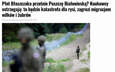 24.08.2021 – Planowany płot na granicy polsko-białoruskiej zagrożeniem dla przyrody!